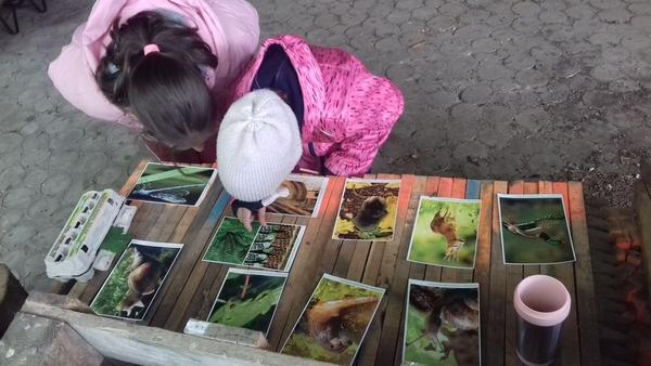 Táborozás az erdei iskolában