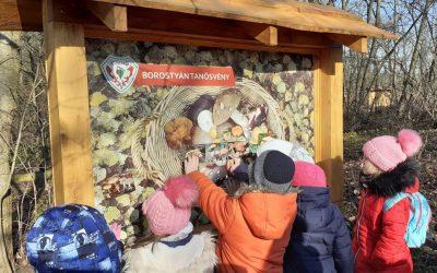 Új tanösvény a Debreceni Nagyerdőn