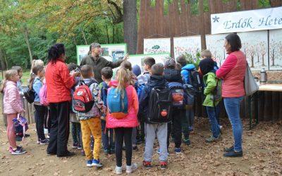 Gyerekek százai fedezték fel a nyíregyházi erdőt